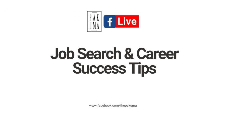 job search and career success